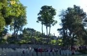 cmentarz-na-rosie-ix-2016